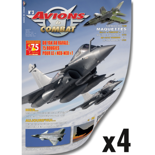 Abonnement Avions de Combat - 1 year Export